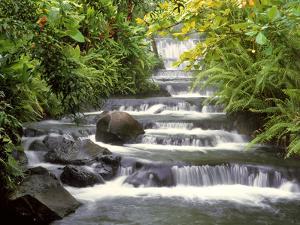 Terraced Falls by Monte Nagler