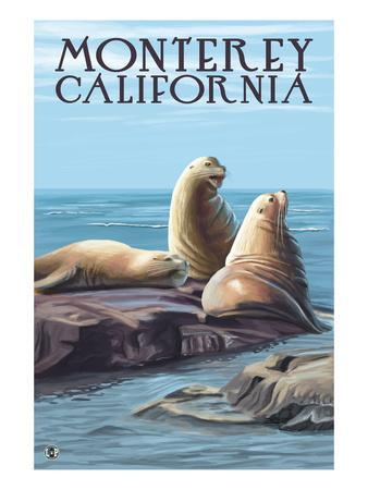 https://imgc.allpostersimages.com/img/posters/monterey-california-sea-lions_u-L-Q1GPED50.jpg?p=0