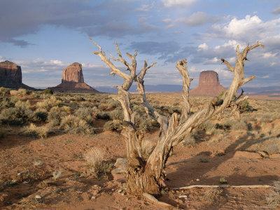 https://imgc.allpostersimages.com/img/posters/monument-valley-arizona-usa_u-L-P1JO2Z0.jpg?p=0