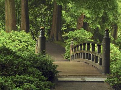 https://imgc.allpostersimages.com/img/posters/moon-bridge-after-the-rain-portland-japanese-garden-portland-oregon-usa_u-L-PHAUT00.jpg?p=0