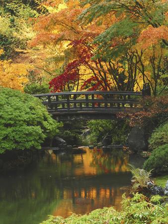 https://imgc.allpostersimages.com/img/posters/moon-bridge-in-autumn-portland-japanese-garden-portland-oregon-usa_u-L-PXQO0M0.jpg?p=0