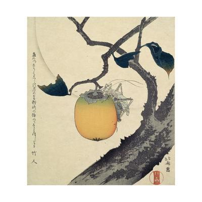 https://imgc.allpostersimages.com/img/posters/moon-persimmon-and-grasshopper-1807_u-L-PTHPFX0.jpg?p=0