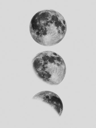 https://imgc.allpostersimages.com/img/posters/moon_u-L-F9G4F70.jpg?artPerspective=n