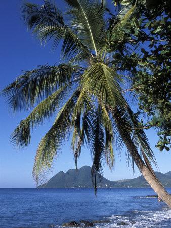 https://imgc.allpostersimages.com/img/posters/morne-larcher-baie-de-la-chery-chery-bay-martinique-west-indies-caribbean-central-america_u-L-P1TY6P0.jpg?p=0