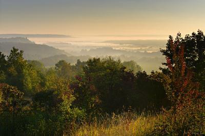 https://imgc.allpostersimages.com/img/posters/morning-fog-in-the-saale-valley-near-naumburg-burgenlandkreis-saxony-anhalt-germany_u-L-Q11YTY90.jpg?p=0