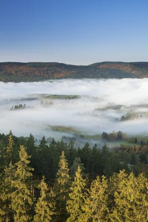 https://imgc.allpostersimages.com/img/posters/morning-fog-over-the-schluchsee-black-forest-baden-wurttemberg-germany_u-L-Q1EY3O70.jpg?artPerspective=n