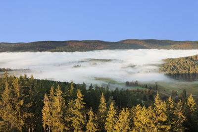 https://imgc.allpostersimages.com/img/posters/morning-fog-over-the-schluchsee-black-forest-baden-wurttemberg-germany_u-L-Q1EY4Q00.jpg?artPerspective=n
