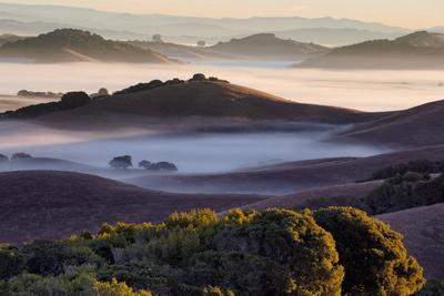 https://imgc.allpostersimages.com/img/posters/morning-light-and-misty-hills-petaluma-sonoma-county-northern-california_u-L-Q10DK5Y0.jpg?p=0