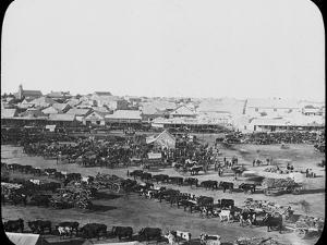 Morning Market, Kimberley, South Africa, C1890