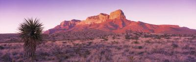 Morning, Mountain, National Park, Guadalupe Mountains, Texas, United States