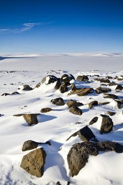 The Foot of Glacier by Morten Falch Sortland