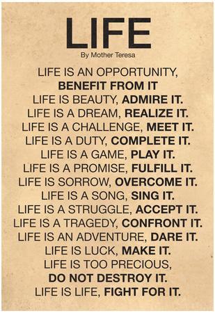 https://imgc.allpostersimages.com/img/posters/mother-teresa-life-quote-poster_u-L-F5B87Q0.jpg?p=0
