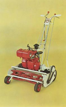 Motorized Lawnmower