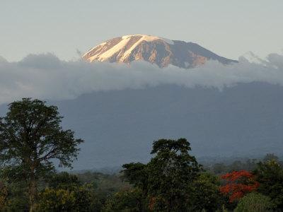 https://imgc.allpostersimages.com/img/posters/mount-kilimanjaro-unesco-world-heritage-site-tanzania-east-africa-africa_u-L-P7X0L00.jpg?artPerspective=n