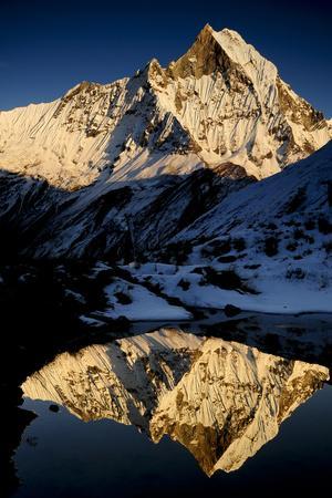 https://imgc.allpostersimages.com/img/posters/mount-machapuchare-6997m-at-sunset-annapurna-himal-annapurna-sanctuary-central-nepal_u-L-Q13AATL0.jpg?p=0