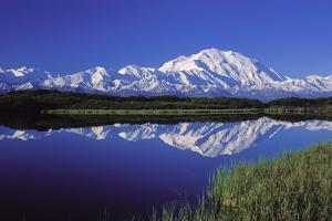 Mount Mckinley Reflected in Pond Denali National