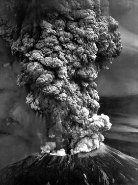 Mount St. Helens in Eruption on May 18, 1980