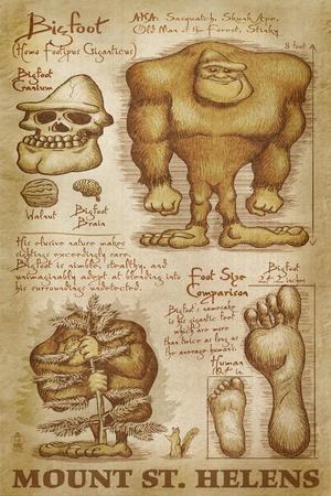 https://imgc.allpostersimages.com/img/posters/mount-st-helens-washington-bigfoot-da-vinci_u-L-Q1GQLZ30.jpg?p=0