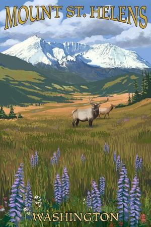 https://imgc.allpostersimages.com/img/posters/mount-st-helens-washington-elk-and-meadow_u-L-Q1GQT1C0.jpg?p=0