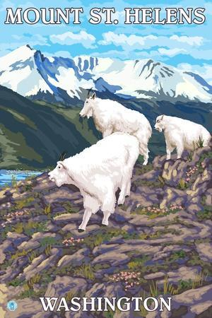 https://imgc.allpostersimages.com/img/posters/mount-st-helens-washington-goat-family_u-L-Q1GQMMZ0.jpg?p=0