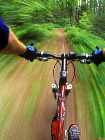 https://imgc.allpostersimages.com/img/posters/mountain-bike-trail-riding_u-L-PXPLWR0.jpg?p=0
