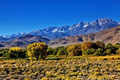 https://imgc.allpostersimages.com/img/posters/mountain-landscape-along-hwy-395-california-usa_u-L-PN6US60.jpg?p=0