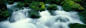 Mountain Stream Kyoto Japan