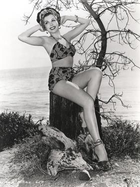 Ann Miller sitting in Lingerie by Movie Star News