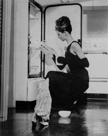 Audrey Hepburn holding Ballet Shoes and Feeding the Cat by Movie Star News