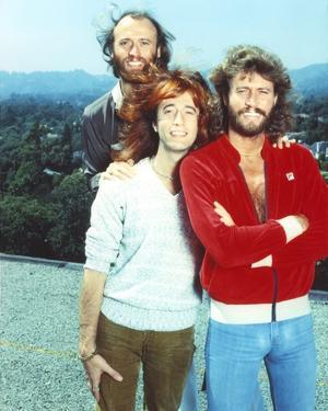 Bee Gees Band Members standing Behind a Mountain Scenery by Movie Star News