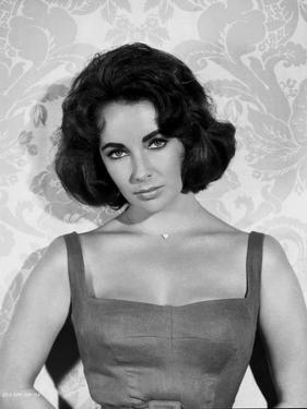 Elizabeth Taylor Posed in Tanktop Classic Portrait by Movie Star News