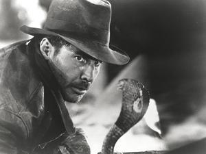 Harrison Ford Stares to a Cobra by Movie Star News