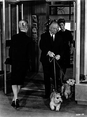 Hitchcock Alfred with Dog in Black and White by Movie Star News