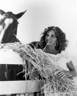 Jennifer Jones Feeding Horse with Hay by Movie Star News