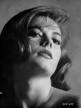 Natalie Wood Portrait in Topless by Movie Star News