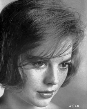 Natalie Wood Staring in Black and White by Movie Star News