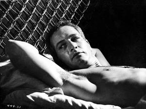 Paul Newman on Bed Black and White by Movie Star News