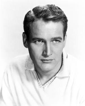 Paul Newman Portrait in Polo Shirt by Movie Star News