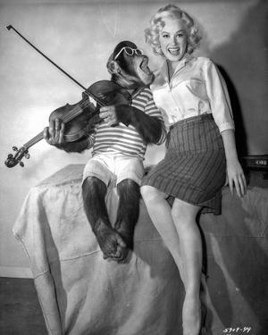 Sex Kittens Go To College Mamie Van Doren Posed with Monkey by Movie Star News