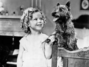 Shirley Temple Playing a Dog in White Dress by Movie Star News