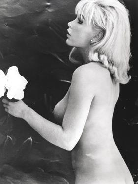 Stella Stevens Nude in Black and White Portrait by Movie Star News