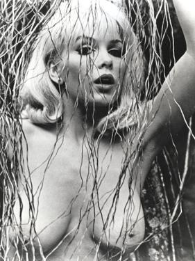 Stella Stevens Nude Portrait in Black and White by Movie Star News