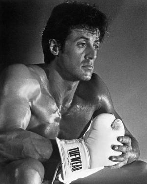 Sylvester Stallone Action Pose Portrait by Movie Star News