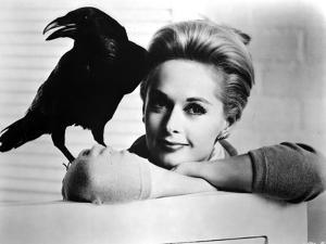 Tippi Hendren Posed in Classic by Movie Star News