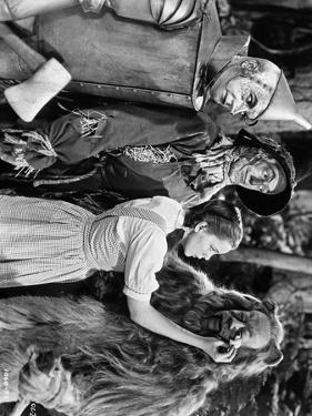 Wizard Of Oz Dorothy Wipes Coward Lion's Tears	 by Movie Star News
