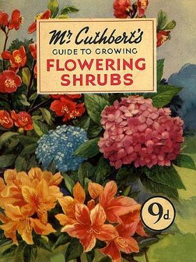 Mr Cuthberts Guide To Flowering, 1953, UK