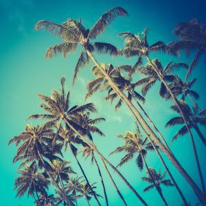 Retro Diagonal Palm Trees in Hawaii by Mr Doomits