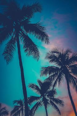 Retro Sunset Hawaii Palm Trees by Mr Doomits
