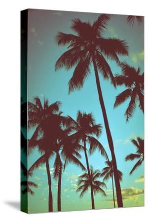 Vintage Tropical Palms by Mr Doomits