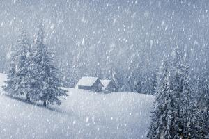 Wooden House in Winter Forest by mr. Smith